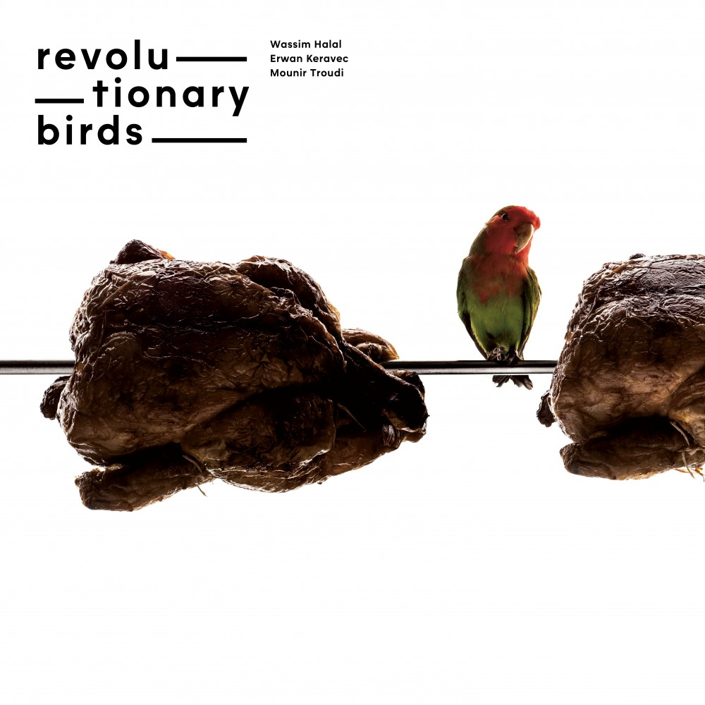 Revolutionary Birds